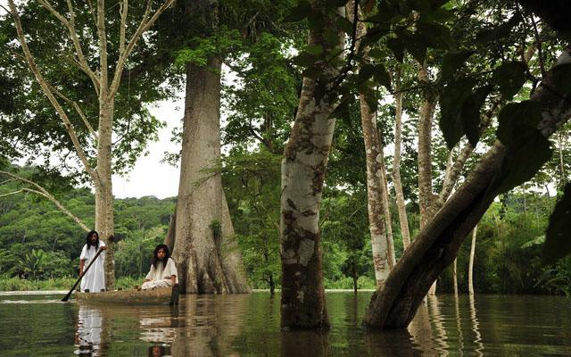 Admira la belleza natural de la Selva Lacandona