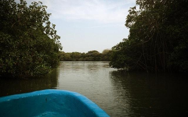 De Aventura por Veracruz, Isla de las Conchitas