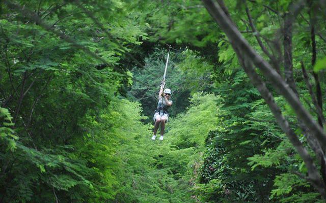 Huana Coa Canopy Adventure, lánzate en las tirolesas