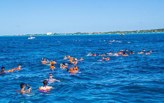 Practica snorkel en la punta norte de la isla