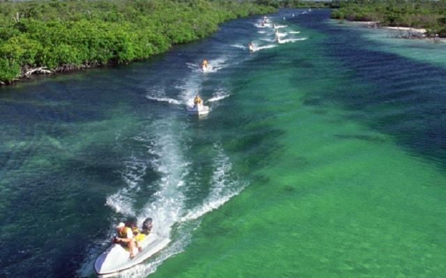 Jungle Tour Cancún, la laguna es el hogar de muchos animales asombrosos