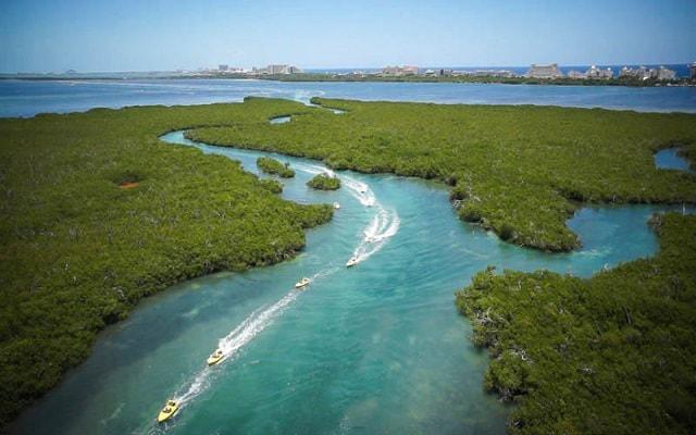 Jungle Tour Cancún, navega por los canales de la laguna