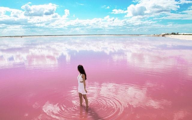 Las Coloradas y Río Lagartos, Yucatán, bellos paisajes