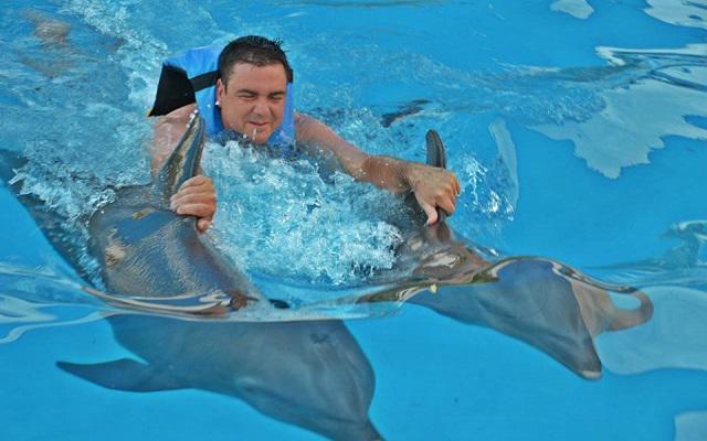Nado con Delfines Cancún-Isla Mujeres experiencia inolvidable
