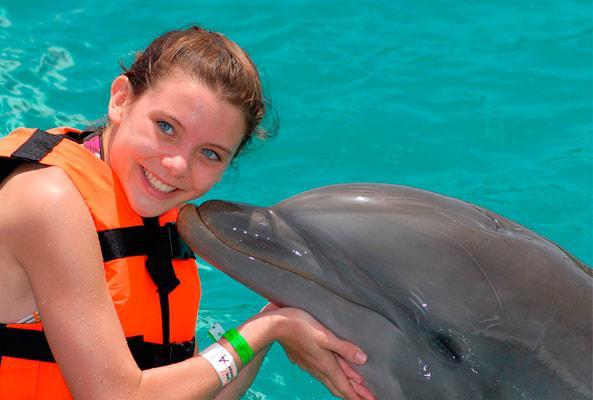 Nado con Delfines Cozumel en Cozumel