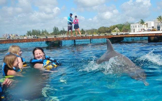 Nado con Delfines Cozumel, en Swim Adventure tendrás unos minutos libres para convivir con los delfines