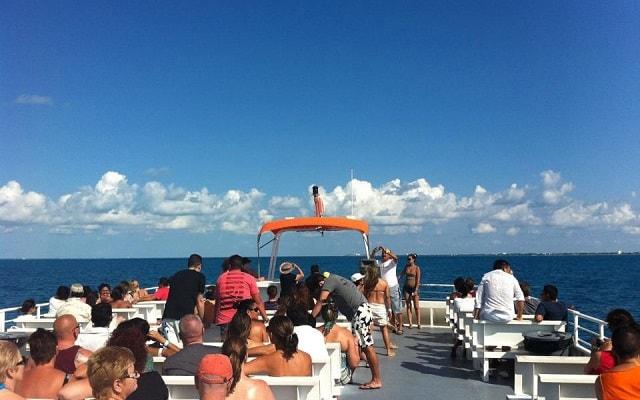 Nado con Delfines en Cancún Isla Mujeres, incluye traslado marítimo