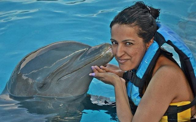Nado con Delfines en Cancún Isla Mujeres, diferentes opciones de paquetes disponibles