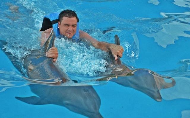 Nado con Delfines en Cancún Isla Mujeres, será experiencia inolvidable