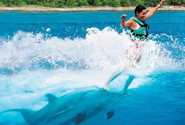 Nado con Delfines en Playa del Carmen
