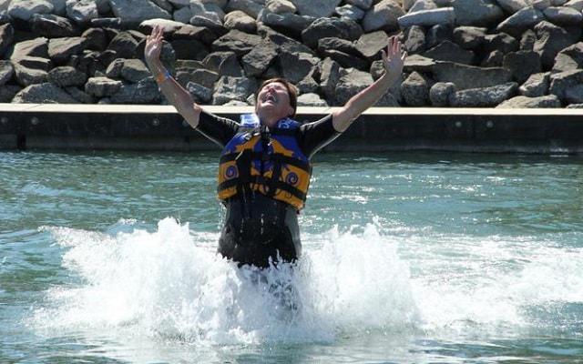 Nado Con Delfines Los Cabos - Tours, paseos y actividades ...