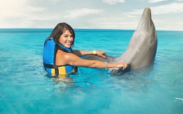 Nado con Delfines Cancún-Isla Mujeres, interactuar con ellos es otro nivel