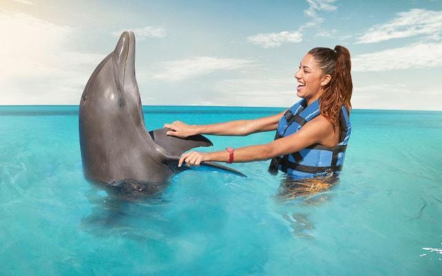 Nado con Delfines Cancún-Isla Mujeres,  también son juguetones