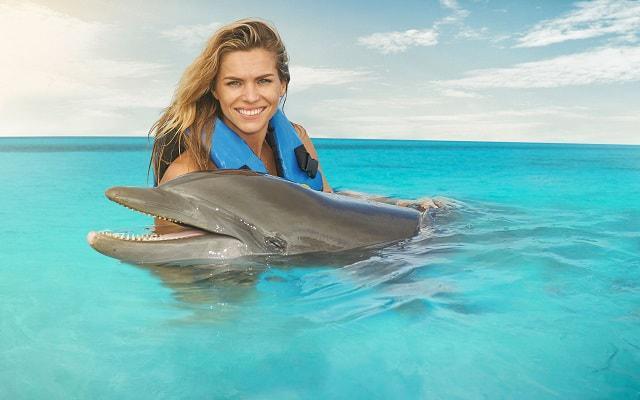 Nado con Delfines Cancún-Isla Mujeres,  estar en contacto será extraordinario
