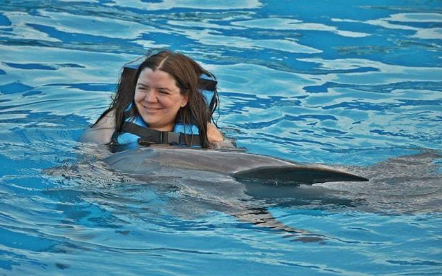 Nado con Delfines Vallarta, una experiencia única