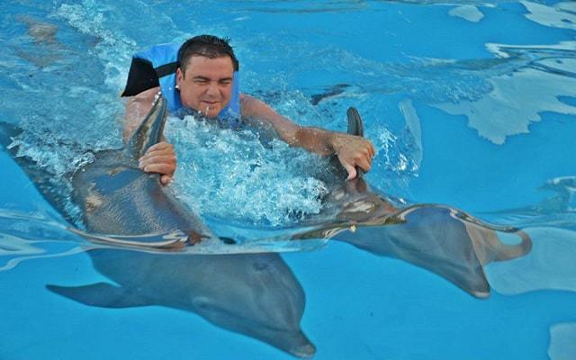 Nado con Delfines Vallarta, será un día lleno de aventura