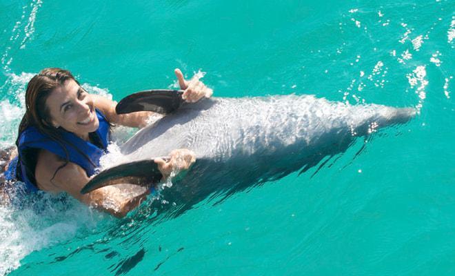 Nado con Delfines Vallarta
