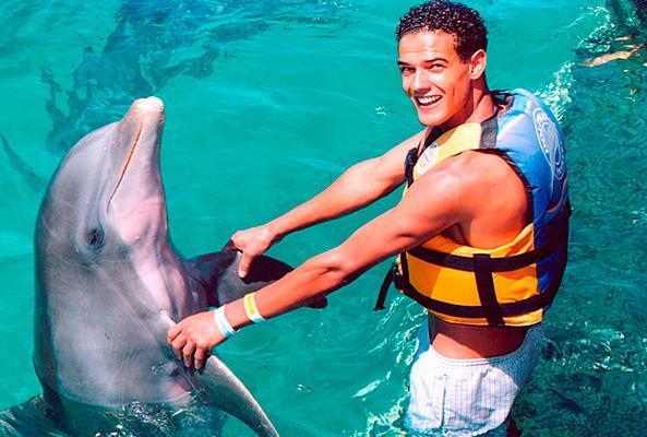 Nado con Delfines Cancún-Isla Mujeres en Cancún