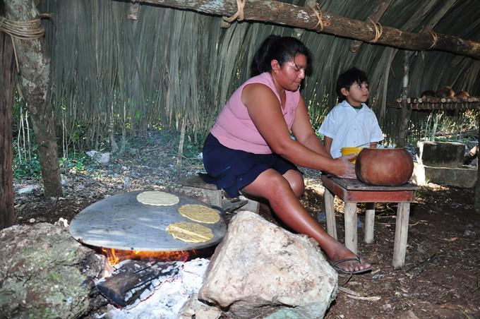 Paseo Extracción de Chicle Maya