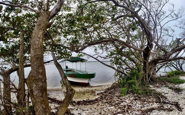 Paseo por Laguna en Mandinga, será una gran experiencia