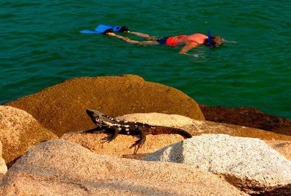 Snorkel en Bahías de Huatulco