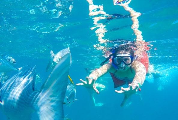 Snorkel y Actividades Acuáticas en el Mar de Cortés