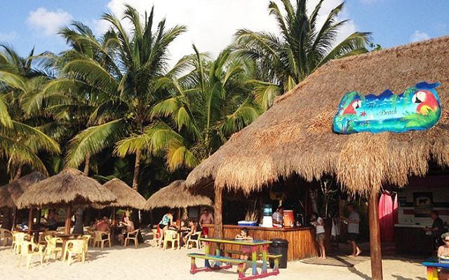 Snorkel y Club de Playa en Cozumel, degustarás un almuerzo ligero