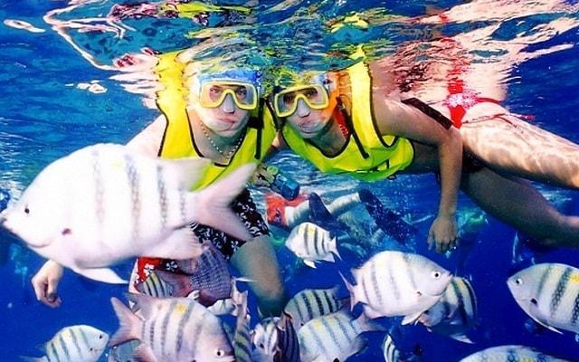 Snorkel y Club de Playa en Cozumel, podrás sumergirte en aguas cristalinas