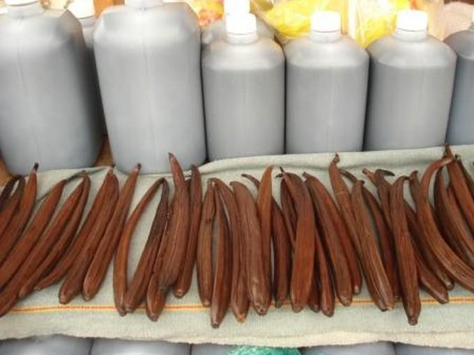 Tajín y Papantla, la producción de vainilla es famosa en este lugar