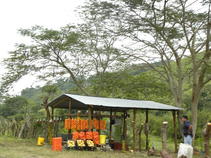 Tajín y Papantla a lo largo del camino verás los diferentes productos que venden los locales