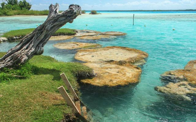 Tour a Bacalar, en el Cenote Cocalitos podrás admirar las nubes hechas por formaciones rocosas