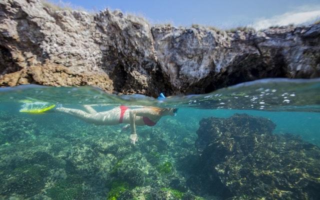 Tour a Isla Marietas y Playa Escondida, será una experiencia inolvidable