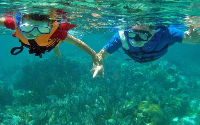 Conoce los arrecifes que rodean la isla