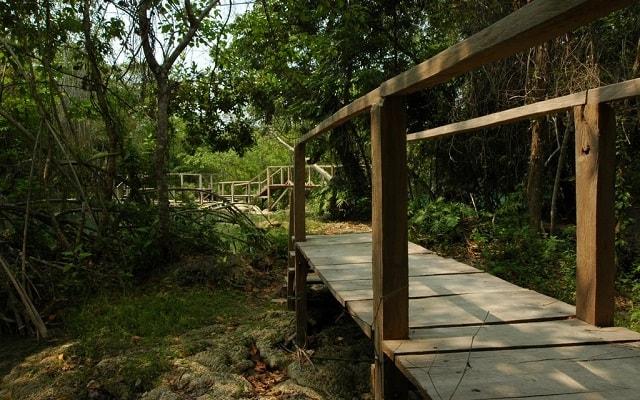 Tour a Salto Grande Candelaria Campeche, un parque ecológico