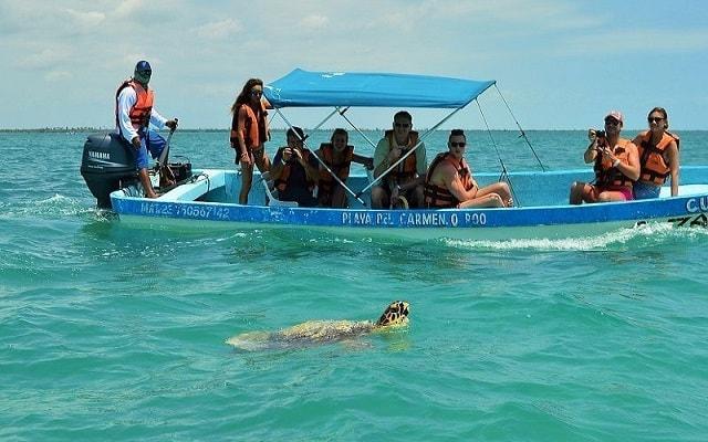 Tour a Sian Ka'an, durante el recorrido verás la vida marina