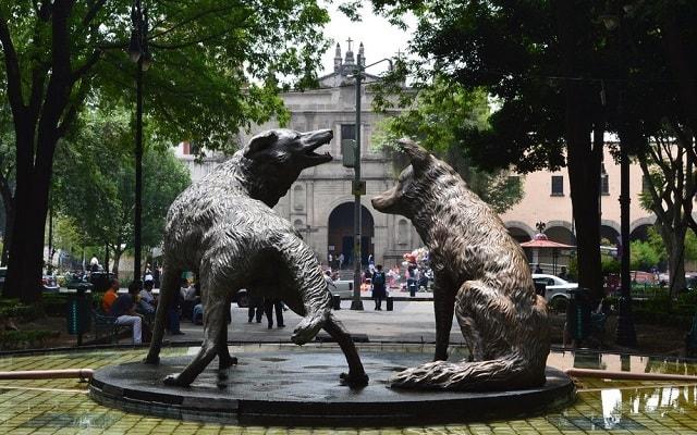 Tour a Xochimilco, Ciudad Universitaria y Coyoacán, visitarás el maravilloso barrio de Coyoacán