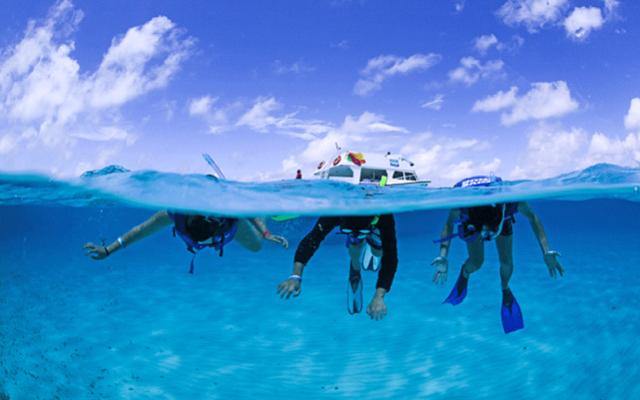 Tour al Cielo Cozumel más Snorkel, conocerás el arrecife Paraíso y Colombia