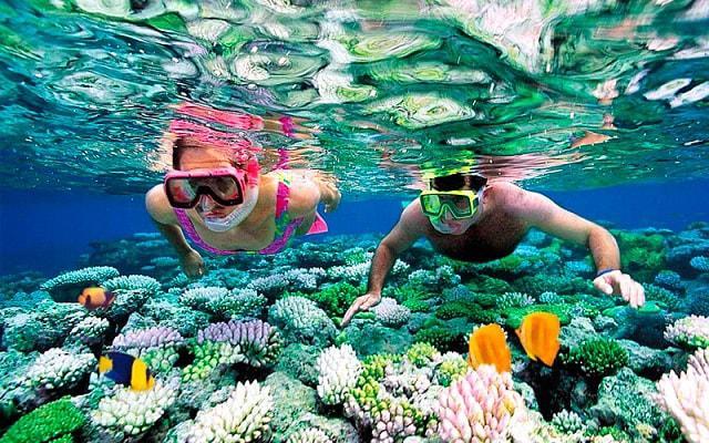 Tour al Cielo Cozumel más Snorkel, admira la vida marina