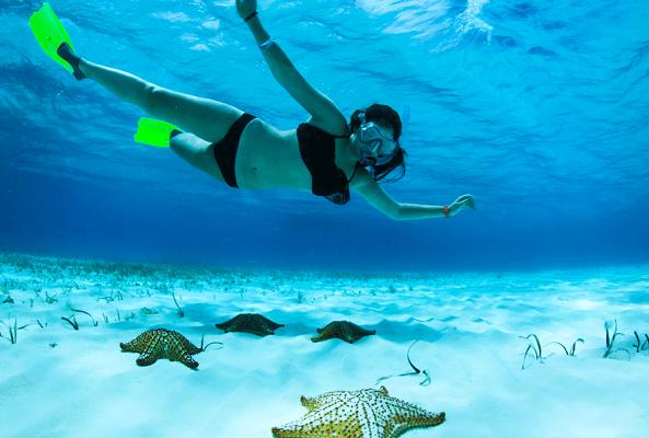 Tour al Cielo Cozumel más Snorkel en Cancún