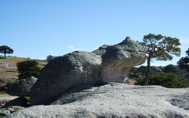 Visita el Valle de las Ranas