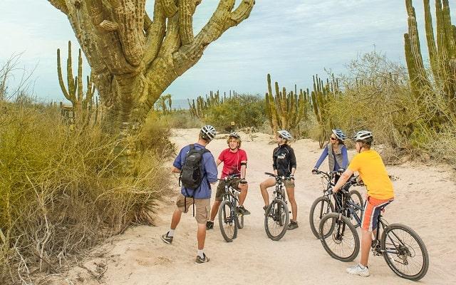 Tour en Bicicleta de Montaña por el Desierto de la Baja, para quienes prefieren la aventura