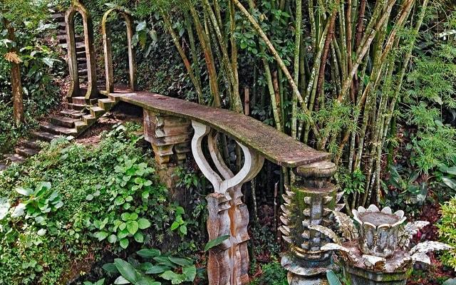Tour por el Jardín Surrealista Xilitla y Sótano de las Huahuas, conocerás un espacio donde la naturaleza y arquitectura conviven en armonía