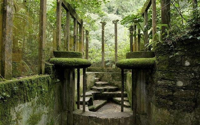 Tour por el Jardín Surrealista Xilitla y Sótano de las Huahuas, te llenarás de buena vibra