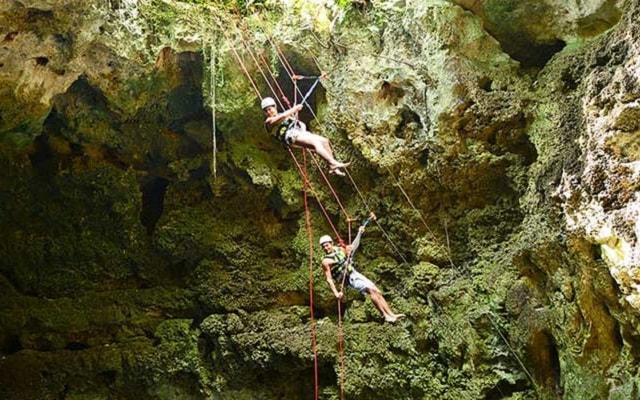 Tour Xenotes Oasis Maya, desciende en rappel