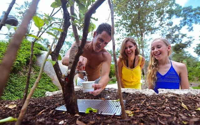 Tour Xenses, refréscate en un Jardín Xítrico