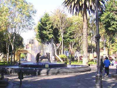 Parque en Xochimilco - Tour Xochimilco, Ciudad Universitaria y Coyoacan