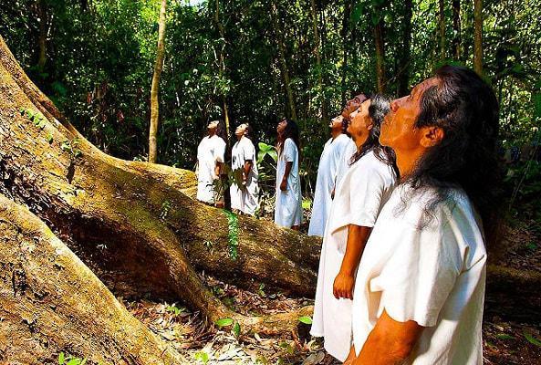 Circuito Naturaleza y Cultura Chiapas en Chiapas