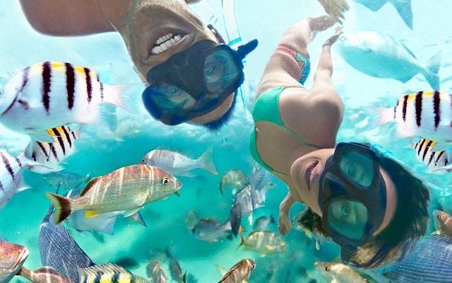 Xel Há, practica snorkel en la caleta natural